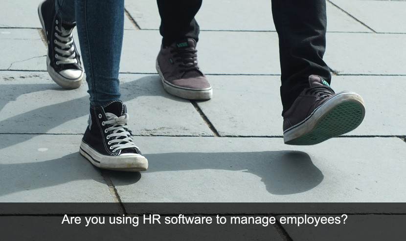 Use HR Software to Manage Employees