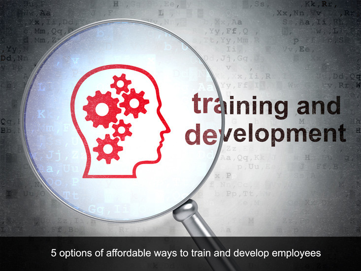 5 Affordable Forms of Employee Training And Development