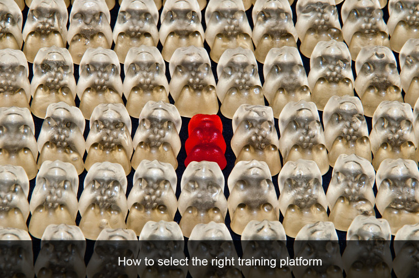 How to select the right online training platform