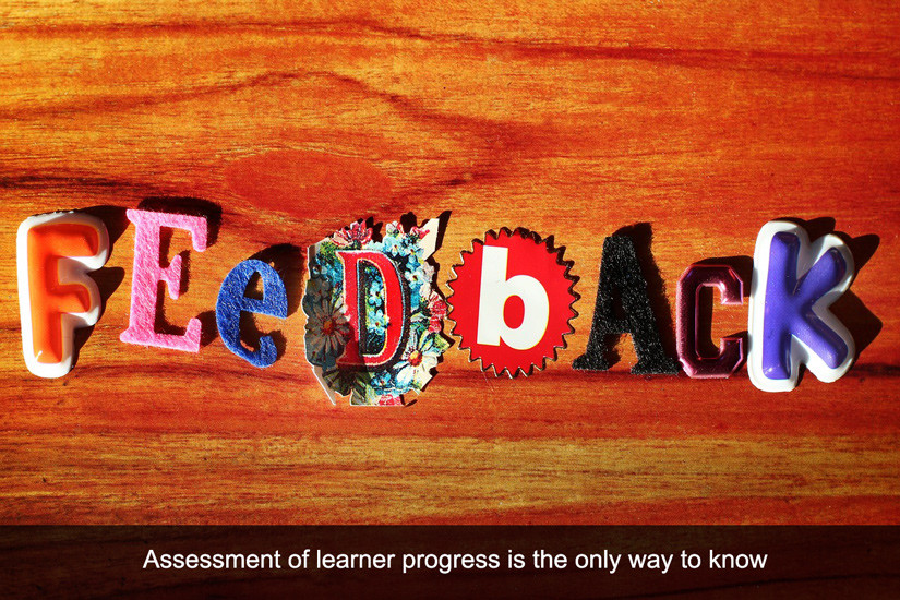 LMS Must-Have #1: Robust Assessment and Feedback Options