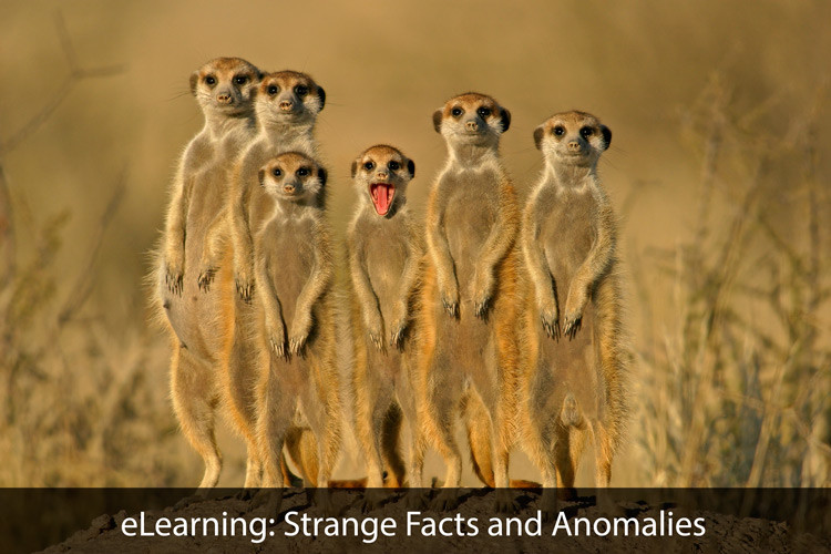 eLearning: Strange Facts and Anomalies