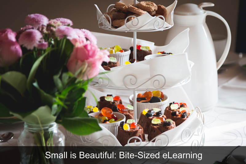 Small is Beautiful: Bite-Sized eLearning