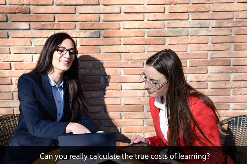 The ROI of Learning Part 5: The True Costs of Learning