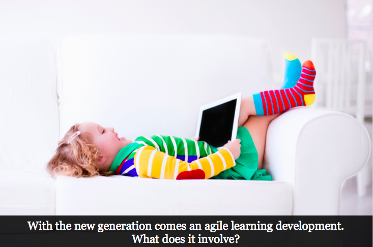 Agility in the eLearning Environment