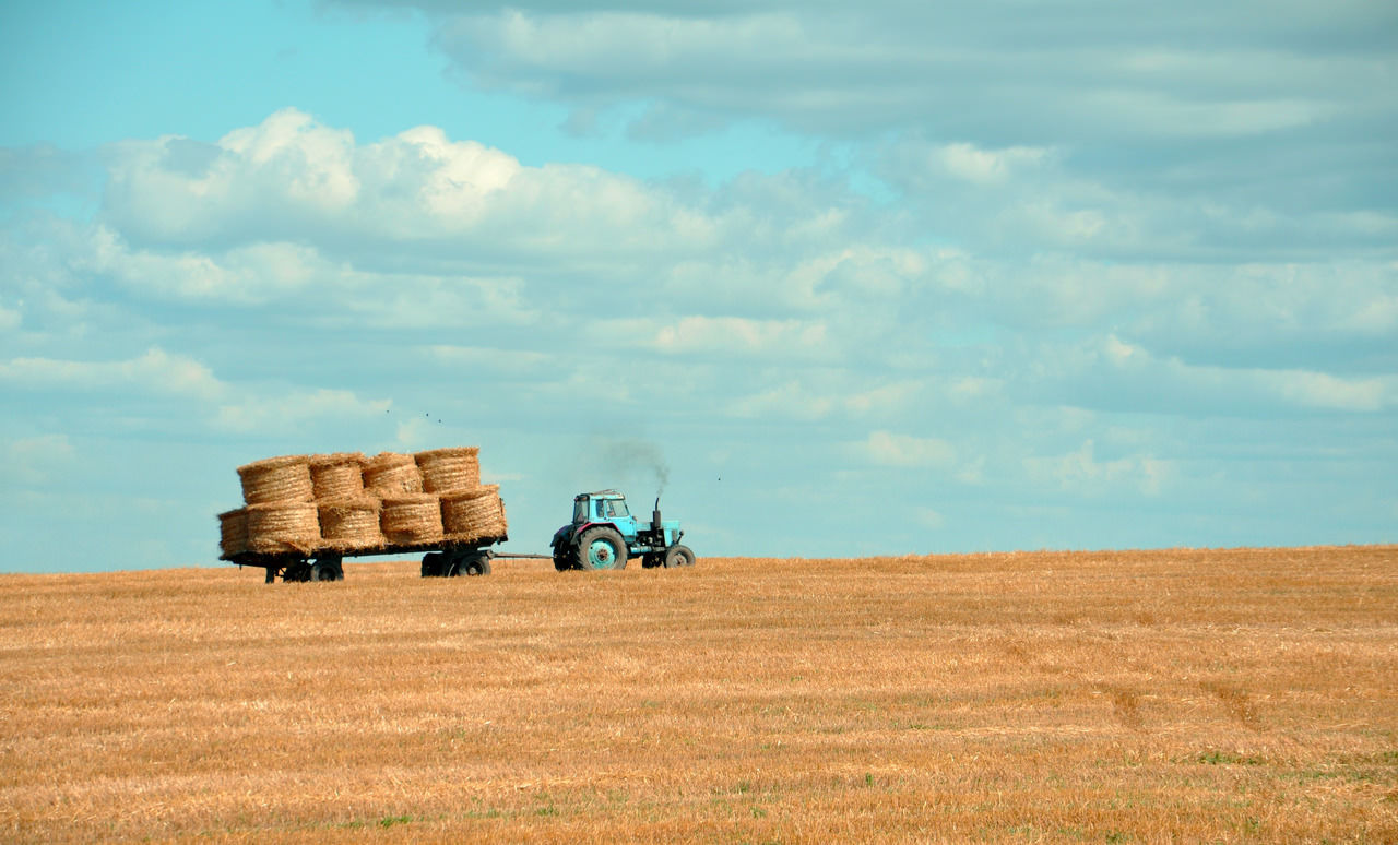 Harvest Season: Time for Farm Safety Training