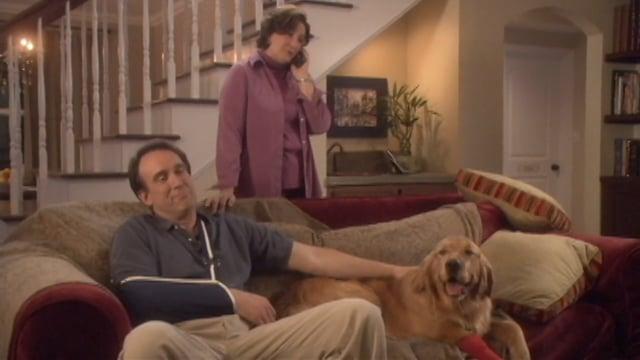 Patient Care: Treat 'Em Like Dogs