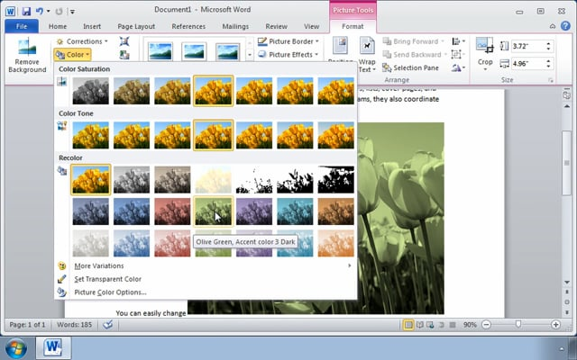 Microsoft Word 2010: Modifying Pictures